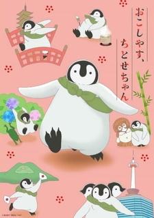 Okoshiyasu, Chitose-chan: Hajimemashite, Chitose-chan