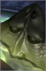 Human Face Fish