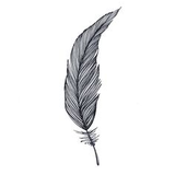 Black and white feathers drawing