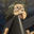 Shikimori.лучшийсайт